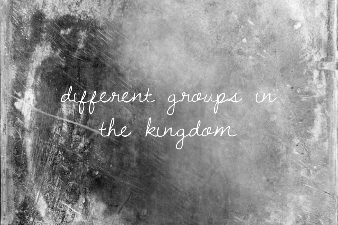 different-groups-in-the-kingdom